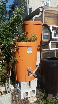 Two rain water barrels connected with a plastic hose.